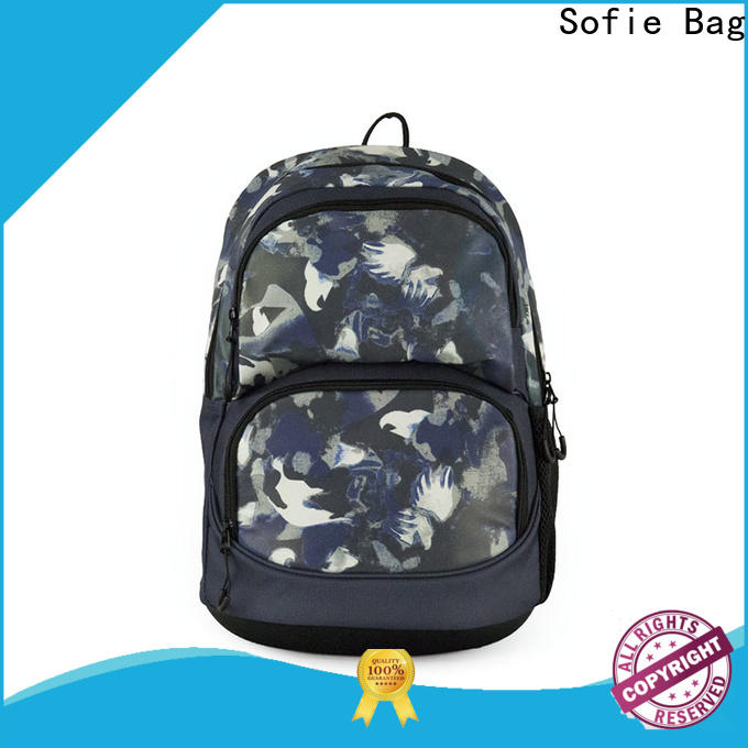 Sofie fashion school bags for boys customized for packaging