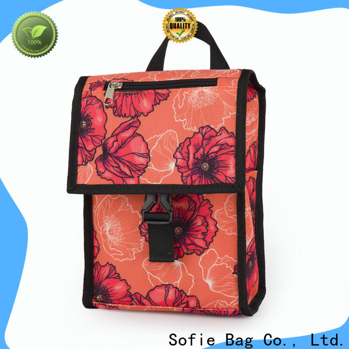 Sofie OEM insulated cooler bags company for kids