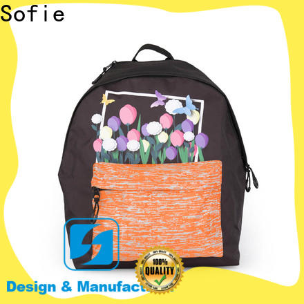 two pockets school backpack supplier for students