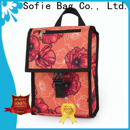 Sofie insulated cooler bags factory for kids