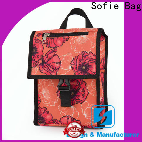 Sofie latest insulated cooler bags company for students