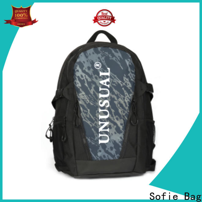 Sofie laptop backpack wholesale for college