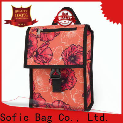 ODM insulated bag with good price for kids