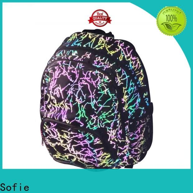 Sofie school bags for boys series for students