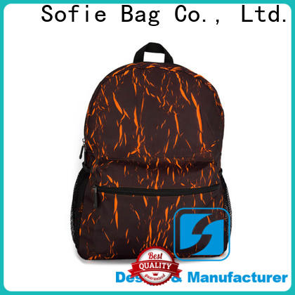 two zipper side stylish backpack supplier for college