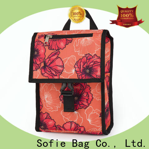 Sofie insulated cooler bags manufacturers for students