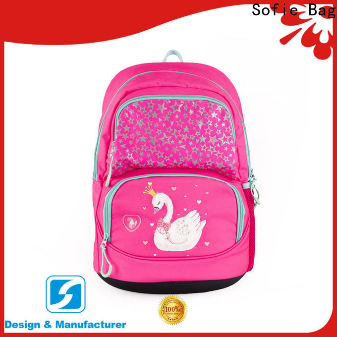Sofie school bags for boys customized for children